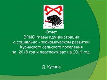 Презентация отчёт 2019_1